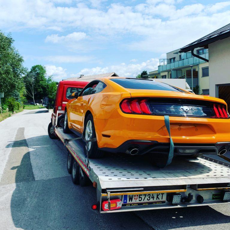 Autotransport Mustang