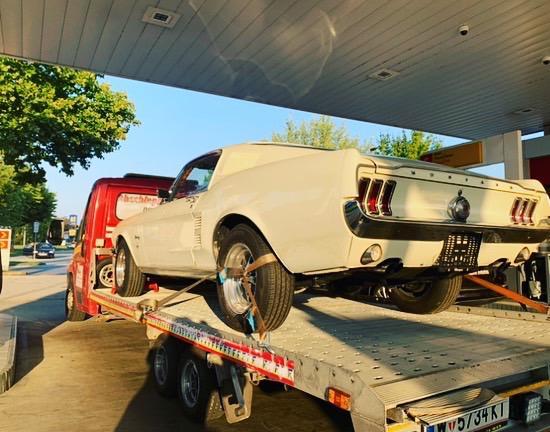 Autotransport Mustang 70